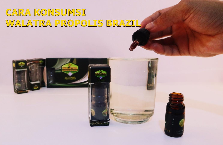 Aturan Pakai Walatra Propolis Brazil