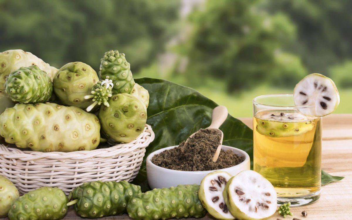 9 Manfaat Buah Mengkudu Sebagai Obat Herbal